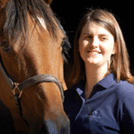 equine sports medicine, About Cave Creek Equine